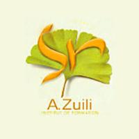 logo institut de formation alain zulli